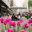 Stock Photo: Broadway and 34th Street in New York