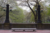 Old lamp posts in Central Park, New York — Stok fotoğraf