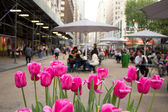 Broadway and 34th Street in New York — Stock Photo