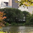 The Pond, Central Park, New York — Foto Stock