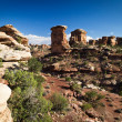 Canyonlands the needles — Stock Photo