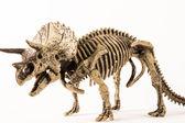 Triceratops — Stock Photo