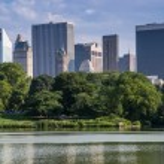 Central park — Stock Photo #30600015