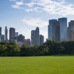 Central park — Stock Photo #30600087
