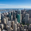 Aereal view of new york city — Stock Photo #30649797
