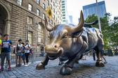 Charging bull of Wall street — Stock Photo