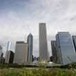 Chicago skyline — Stock Photo