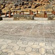 Mosaic in the Roman ruins of Conimbriga — ストック写真