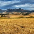 Castilla La Mancha landscape — Stock Photo