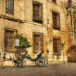 Traditional horse and cart at Cordoba — Stock Photo #23765843