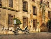 Traditional horse and cart at Cordoba — Stock Photo