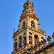 Bell tower of Mosque Cathedral in Cordoba — Stock Photo #24168911