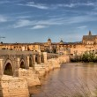 Roman bridge of Cordoba - Stock Photo
