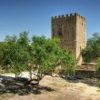 Old Mertola castle in Alentejo — Stock Photo
