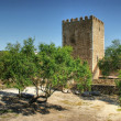 Stock Photo: Old Mertolcastle in Alentejo