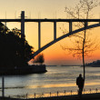 Sunset at Douro River in Porto — Stok fotoğraf #51214987