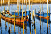 Traditional wooden boats in Lima river — Stock Photo