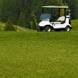 Stock Photo: Electric car golf resort
