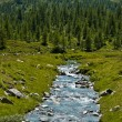 Alpe Devero, views of the river and forest - Stock Photo