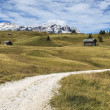 Stock Photo: Mountain path, Dolomites