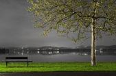 Night landscape — Foto de Stock