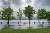Lake overflowed its banks — Stock Photo