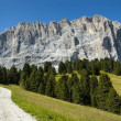 Group Sassolungo, path and forest, Dolomites — Stock Photo