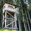 Stock Photo: Bird watching tower in forest