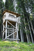 Bird watching tower in the forest — Stock Photo
