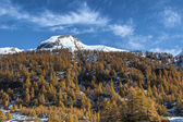 Alpe Devero, autumn season, Piedmont - Italy — Stock Photo