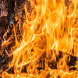 Flames in a wood burning fireplace — Foto Stock