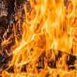 Stock Photo: Flames in wood burning fireplace
