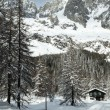 Stock Photo: Val Ferret, mountain chalet in snow among trees