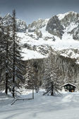 Val Ferret, mountain chalet in the snow among the trees — Stock Photo