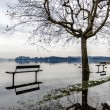 Stock Photo: Lake of Varese, flooding in Gavirate