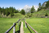 Alpe Devero near the village of Crampiolo — Stock Photo