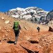 Hikers on their way to Aconcagua as seen in the background, Aconcagua National Park, Argentina, South America — Stock Photo