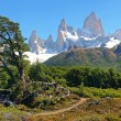 Beautiful landscape with Mt Fitz Roy in Los Glaciares National Park, Patagonia, Argentina, South America — Stock Photo #24208117