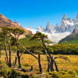 Beautiful landscape with Mt Fitz Roy in Los Glaciares National Park, Patagonia, Argentina, South America — Stock Photo #24208127