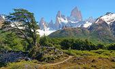 Krásná krajina s mt fitz roy v los glaciares national park, patagonie, argentině, jižní amerika — Stock fotografie
