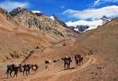 Mountain landscape in the Andes with hikers trekking, Argentina, South America — Stock Photo