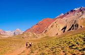 Vallée de montagne dans les andes avec les randonneurs randonnée, argentine, amérique du sud — Photo