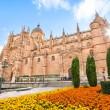 Cathedral of Salamanca, Castilla y Leon region, Spain — Stock Photo