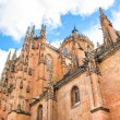 New Cathedral of Salamanca, Spain — Stock Photo