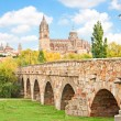 Historic city of Salamanca with New Cathedral and Roman bridge, Castilla y Leon region, Spain - Stock Photo
