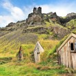 Beautiful landscape with traditional turf houses in Iceland — Stock Photo #24224239