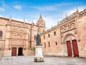 Famous University of Salamanca, Castilla y Leon region, Spain — Stock Photo