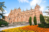 Cathedral of Salamanca, Castilla y Leon region, Spain — Stock Photo