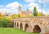 Historic city of Salamanca with New Cathedral and Roman bridge, Castilla y Leon region, Spain — Stock Photo