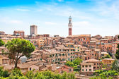 Beautiful view of the historic city of Siena, Italy — Stock Photo